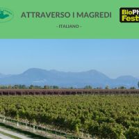 BIO PHOTO FESTIVAL ATTRAVERSO I MAGREDI