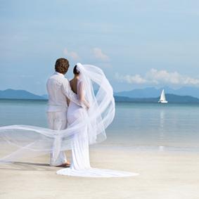 Auguri Matrimonio Bonifico : Pz blu modello di fiore matrimonio inviti di nozze carte